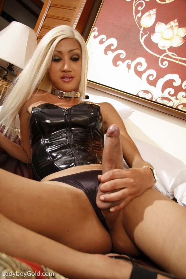 hung ladyboy well